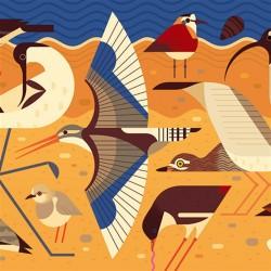 Puzzle Gallery Birds