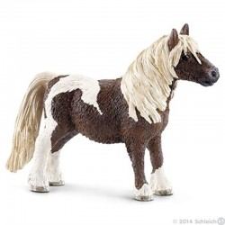 Caballo Capón poni Shetland