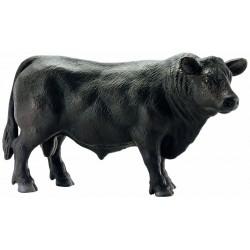 Toro Negro Black Angus