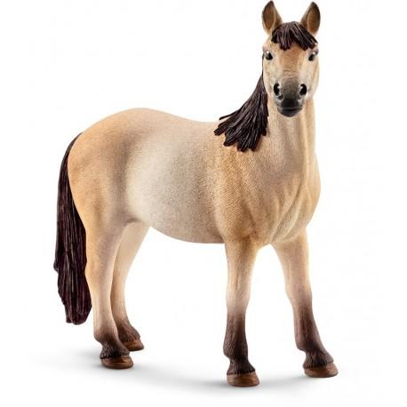 Yegua Mustang