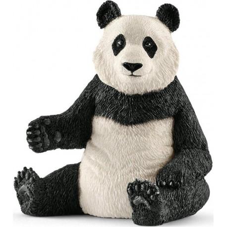 Osa Panda Gigante Hembra