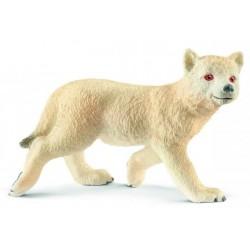 Cría de Lobo Ártico