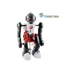 Robot Pirueto